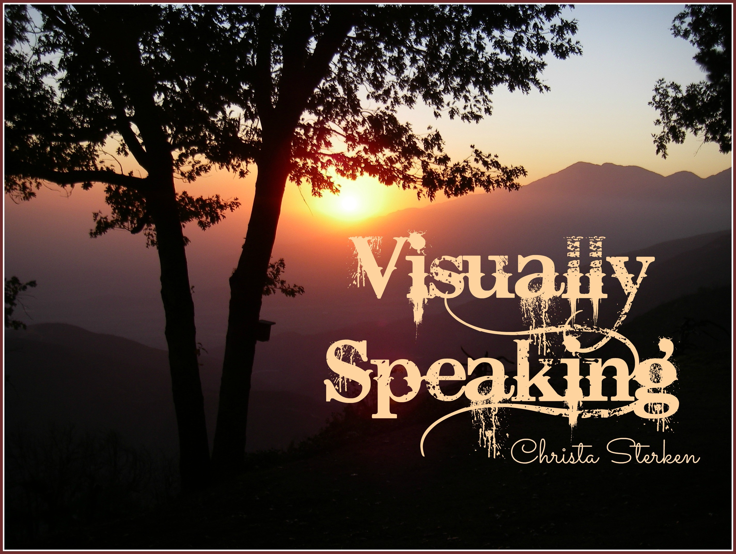 Visually Speaking