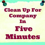 Clean Up For Company In Five Minutes