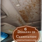 6 Degrees of Carbonation: Our introduction to winter