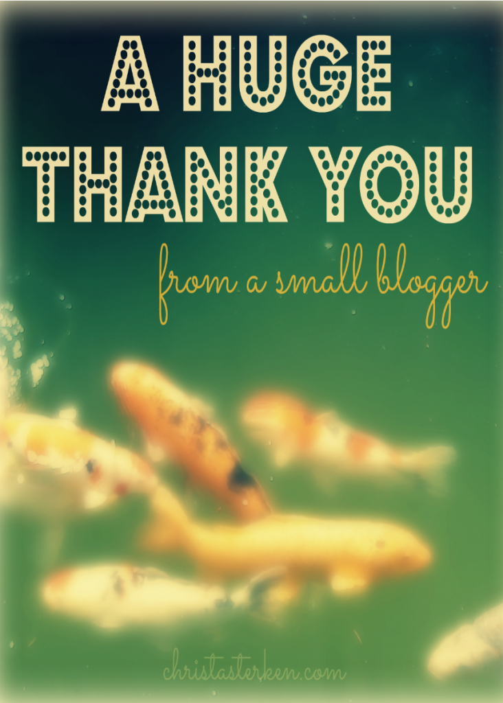 A Huge Thank You From A Small Blogger