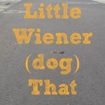 The Little Wiener (Dog) That Could