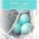 Photography {Robin Eggs}