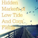 The Hidden Markers of Low Tide And Corn Fields