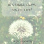 What if I all I want is a small, slow, simple life?
