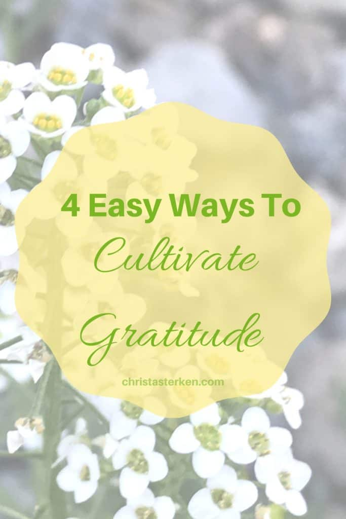 4 Easy Ways To Cultivate Gratitude